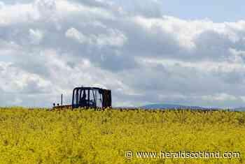 Struan Stevenson: Forget the 'Frankenstein Food' headlines, genetically modified crops are the future - HeraldScotland