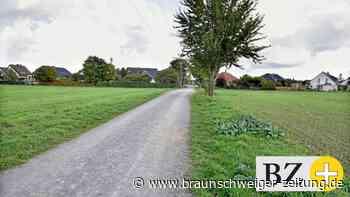 Baugebiet Wiedbusch in Neindorf: Moorgutachten steht aus