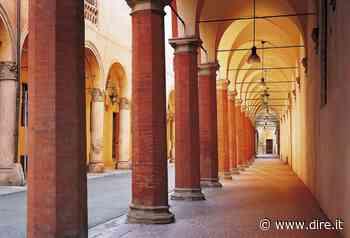 Al via la sperimentazione del 'bosco diffuso' sotto i portici di Bologna - DIRE.it - Dire