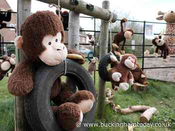 It's a zoo out there! Animal magic on Buckingham housing estate - Buckingham Advertiser