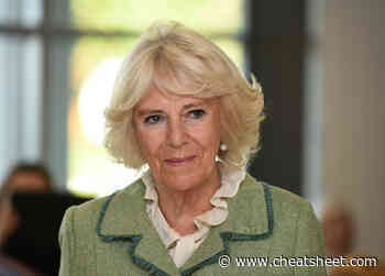 Camilla Parker Bowles To Be Queen? Her Son Denies What Buckingham Palace Already Confirmed - Showbiz Cheat Sheet