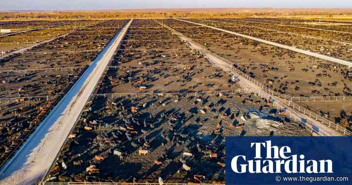 Cut methane emissions to rapidly fight climate disasters, UN report says