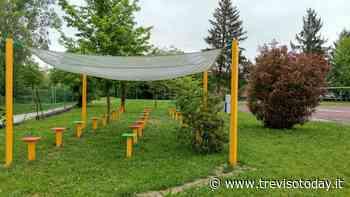 Covid, lezioni all'aperto per la scuola media di Silea - TrevisoToday