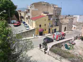 Sciame di api senza controllo vicino Piazza Bagolino | Alqamah - Alqamah