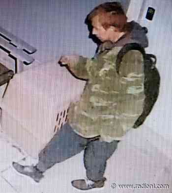 Police looking for suspect after early-morning smash-and-grab in Valleyview - radionl.com