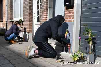 Leerlingen Don Bosco leggen geveltuintjes aan in Lageweg