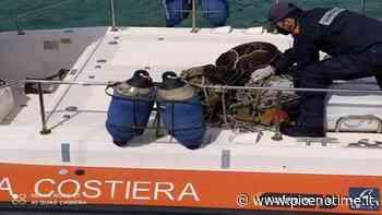 Guardia Costiera San Benedetto del Tronto, sequestrati attrezzi da posta abusivi - picenotime