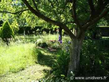 Jardin des ifs Châtenois - Unidivers