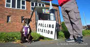 Millions of voters hit the polls across Britain for 'Super Thursday' elections