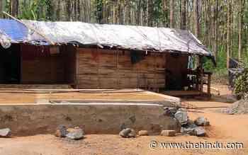 Coronavirus | Lack of income causing anxiety in rural Kerala - The Hindu