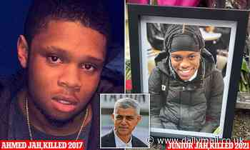 Two brothers.. one nightmare: Is there a crueller illustration of knife crime crisis gripping us?