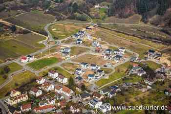 Bodman-Ludwigshafen: Die große Bauplatz-Debatte: Wie sich Vergabekriterien in Bodman-Ludwigshafen ändern und wie es bei den Preisen im Haiden weitergeht - SÜDKURIER Online