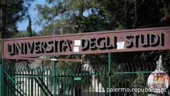 Università di Palermo, il 27 luglio le elezioni per il nuovo Rettore: corsa a due fra Midiri e Vitale - La Repubblica