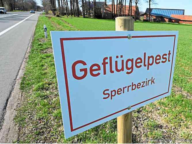 Delbrück: Geflügelpest im Kreis Paderborn: letztes Sperrgebiet aufgehoben