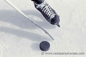 Report: Canada loves hockey, but sport has its issues - Red Deer Advocate