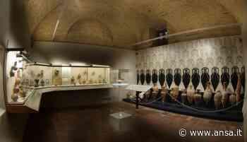 Riaprono Museo del vino e quello dell'olio a Torgiano - ViaggiArt - Agenzia ANSA
