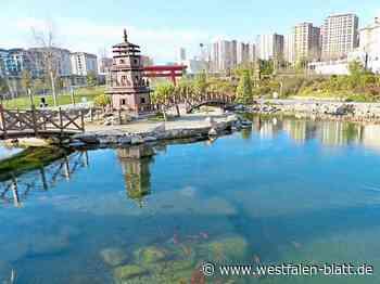 Paderborn: Ein Paderborner Park in Istanbul