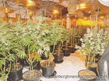 Broxburn cannabis farm was the largest busted by police in Scotland this year - Edinburgh News