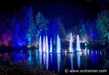 Enchanted Forest: Scotland's biggest light show called off - The Scotsman
