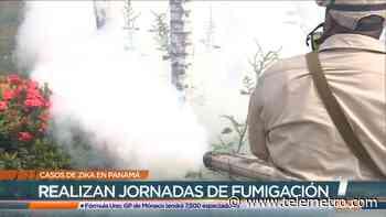 Un caso de zika se presenta en el sector de Tocumen - Telemetro