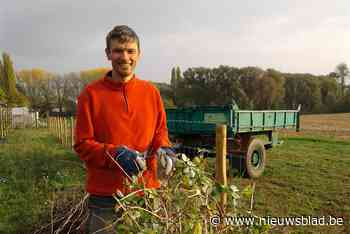 """Filip (52) wil zelfpluktuin laten overnemen, maar dat loopt niet van leien dakje: """"Met al die rompslomp verliezen we allicht volledig oogstseizoen"""""""