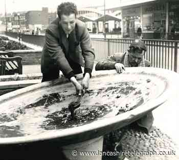 Do you remember the fountains on Broadway in Accrington?
