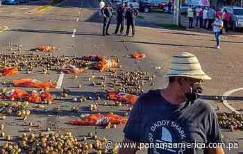 Cebolleros de Natá cierran la vía Interamericana en demanda de apoyo del Gobierno - Panamá América