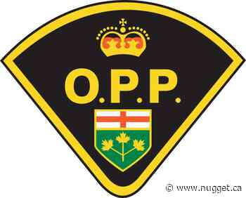 Driver charged with riding watercraft on Trout Lake impaired - The North Bay Nugget