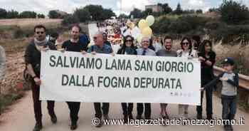 Ambiente, la guerra di Rutigliano contro la Regione Puglia - La Gazzetta del Mezzogiorno