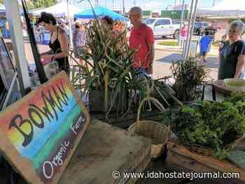Portneuf Valley Farmers Market opens for the 2021 season - Idaho State Journal