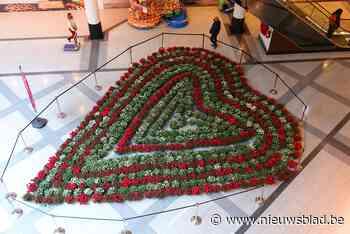 Bloemenhart in Shopping Gent Zuid: azalea's voor moeders én voor de zorg - Het Nieuwsblad