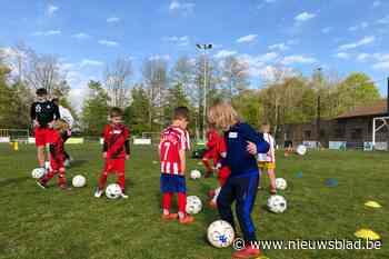 Kleuters voetballen bij S.K. Steenhuffel