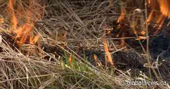 'Extreme' conditions lead to Warman, Sask, fire ban - Global News