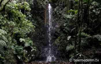 Alcaldía lanza concurso de fotografía ambiental en Sabaneta - Telemedellín