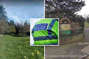 Another abduction attempt reported of boy, 8, in Beckenham