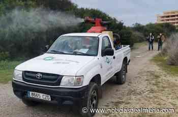 El Ayuntamiento de EL Ejido pide colaboración en la lucha contra moscas y mosquitos - Noticias de Almería