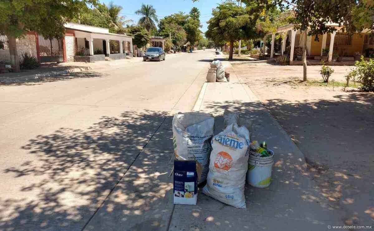 Denuncian graves fallas en la recolección de basura en el ejido Zapotillo, Sinaloa - Debate