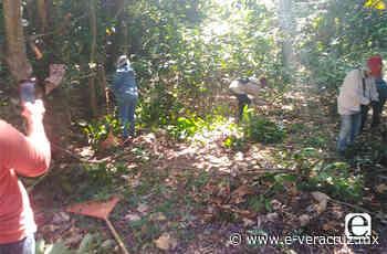Colectivos de búsqueda retoman diligencias en Ejido Tacoteno de Mina - e-consulta Veracruz