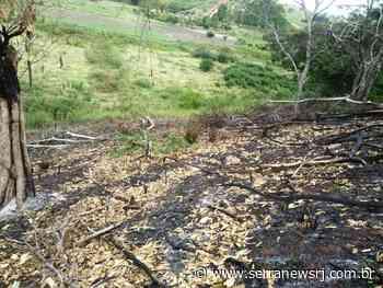 Polícia Ambiental identifica abertura de estrada e desmatamento em Itaocara - Serra News
