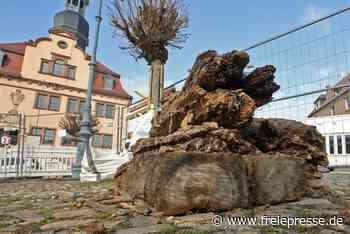 Bergleute entdecken Reste vom alten Marktbrunnen in Waldenburg - Freie Presse