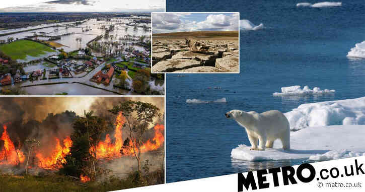 Are you a climate change hypocrite? Here's why you shouldn't worry
