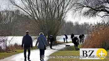 Stadt Braunschweig will für Rollspaß am Südsee sorgen