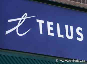 Telus reports Q1 profit down from year ago, raises quarterly dividend