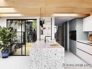 A Glass Courtyard Brings the Garden Inside a London Terrace House - Dwell