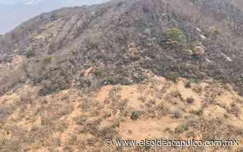 Sofocan incendio forestal en Buena Vista de Cuéllar - El Sol de Acapulco