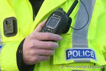 Man arrested after spree of vehicle damage near York