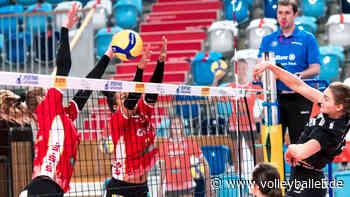 Rote Raben Vilsbiburg gegen SC Potsdam am Mittwoch live ab 17:55 Uhr im Free-TV - volleyballer.de - Das Volleyball-Portal