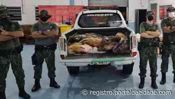 Flagrante Policiamento Ambiental Maritimo flagra garoupa armazenada em Iguape 02/02/2021 às 10h - Adilson Cabral