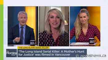 Journalist Deborah Norville talks about the real case that inspired the movie 'The Long Island Serial Killer'