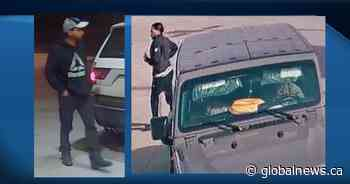 Police search for suspects in multi-jurisdictional vehicle and gas thefts